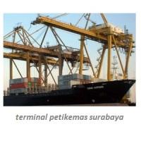 pt terminal petikemas surabaya