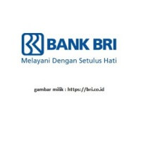 Lowongan Kerja Bank BRI Terbaru November 2017
