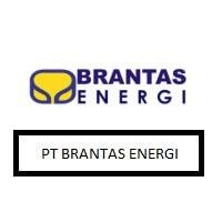pt brantas energi