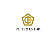 pt tempuran emas (temas ) tbk